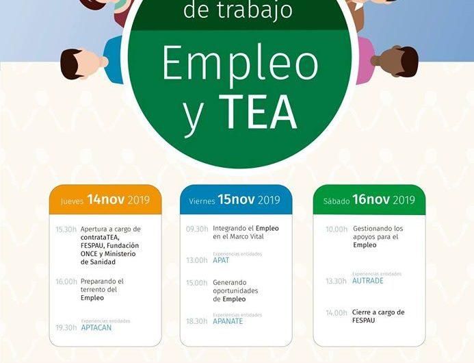 JORNADAS EMPLEO Y TEA EN FESPAU